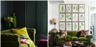 Green Velvet Sofa On Green Living Room
