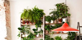 Cool Indoor Garden Storage Ideas