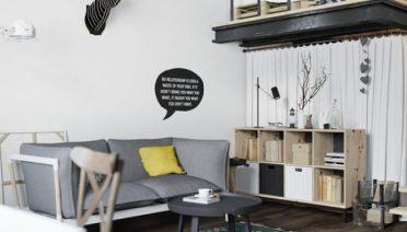 Monochrome Scandinavian Loft With Living Room Design