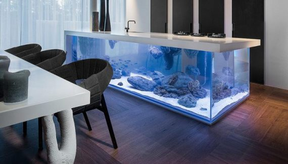 Wonderful Modern Aquarium in the Kitchen 3