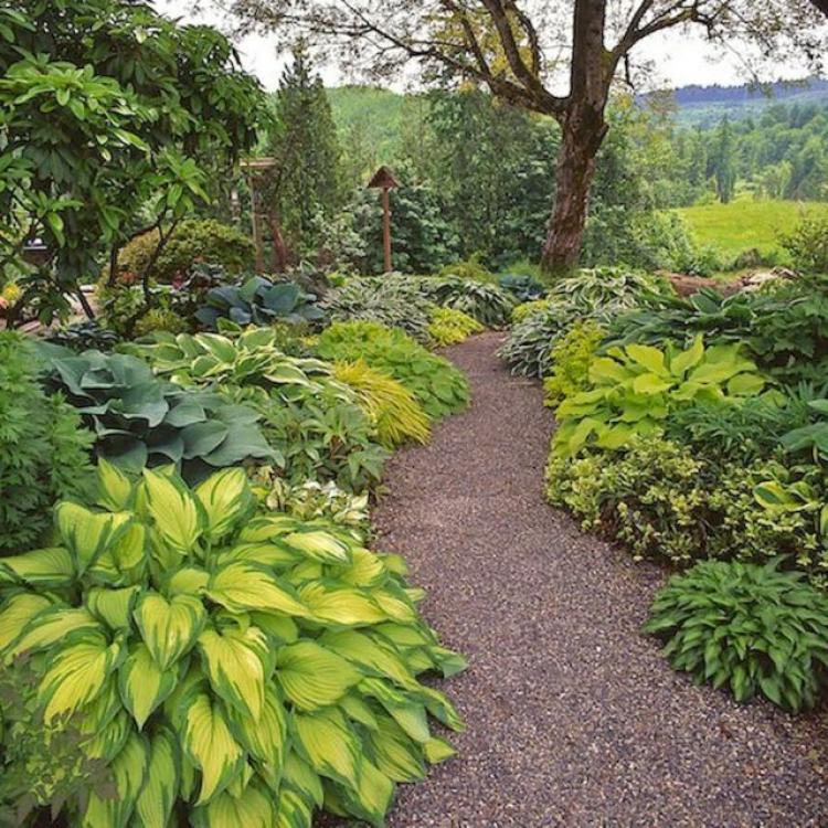 40 Different Garden Pathway Ideas: 40+ Beautiful Garden Path And Walkways Inspirations